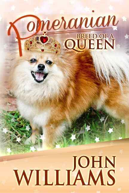 Pomeranian Breed of a Queen
